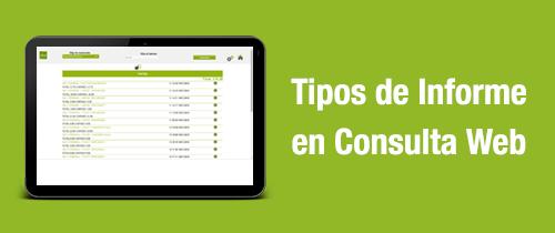 tipos informe consulta web